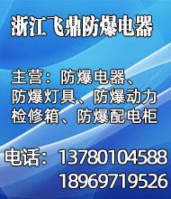 防爆电器_浙江飞鼎防爆电器有限公司
