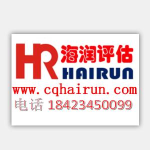 重庆海润资产评估有限公司头像