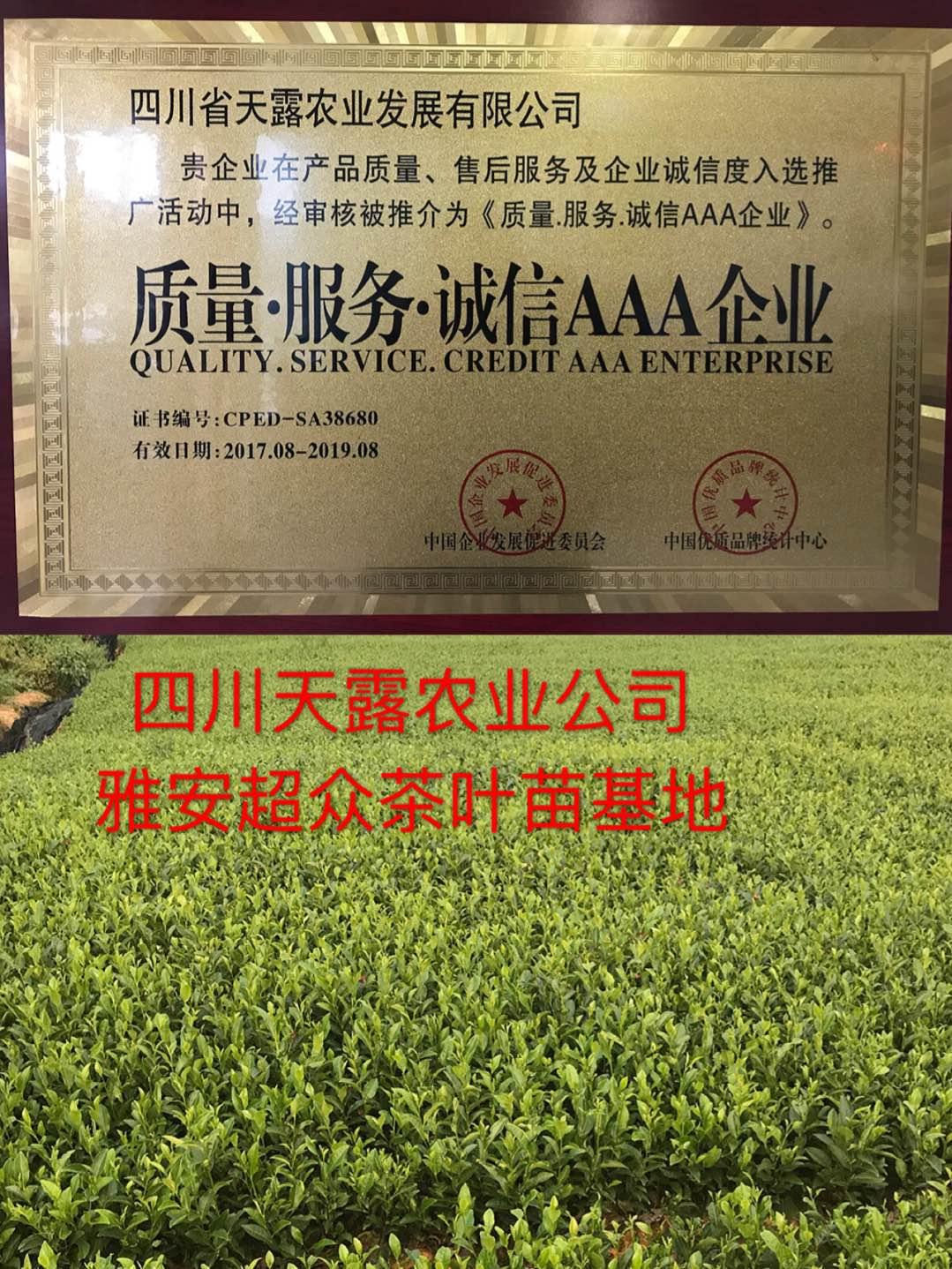 四川省天露农业发展万博体育app手机登陆形象图